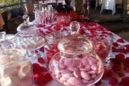 Confettata Per Festa Di Laurea